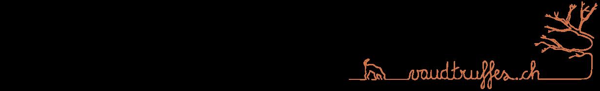 cropped-logo-hau2t.png